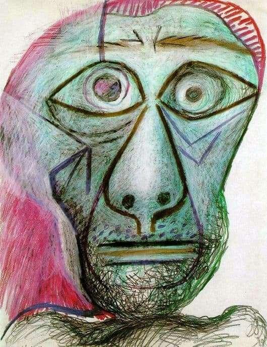 Description of the painting by Pablo Picasso Self portrait (June 30, 1972)