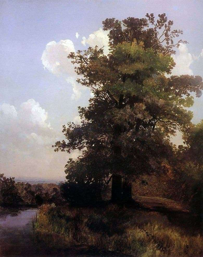 Description of the painting by Alexei Savrasov Oaks