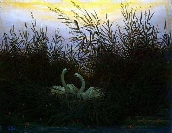 Description of the painting by Caspar Friedrich Swans in the reeds