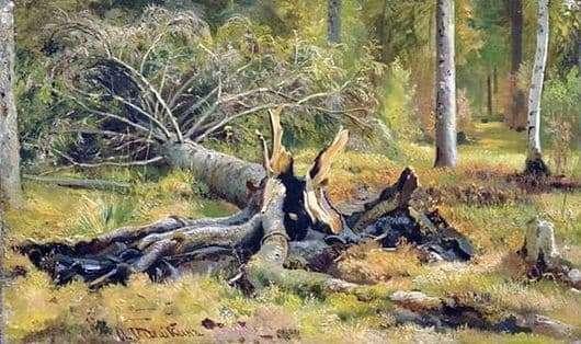 Description of the painting by Ivan Shishkin Fallen Tree