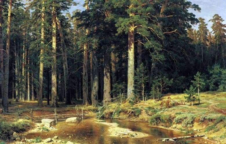 Description of the painting by Ivan Shishkin Ship Forest