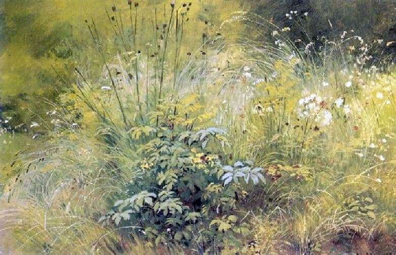 Description of the painting by Ivan Shishkin Grass
