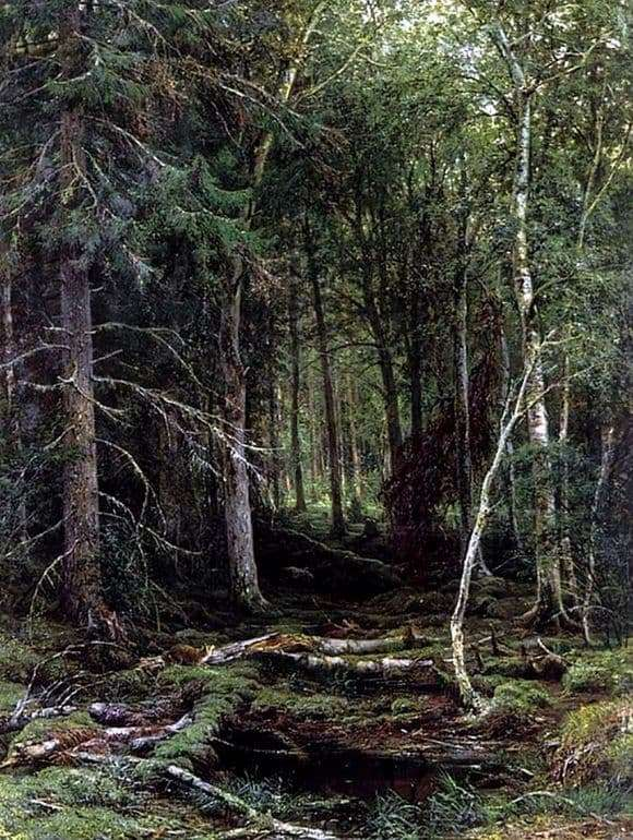 Description of the painting by Ivan Shishkin Forest wilderness