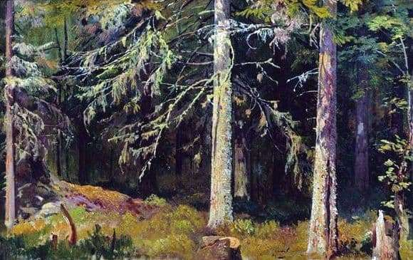 Description of the painting by Ivan Shishkin Spruce Forest