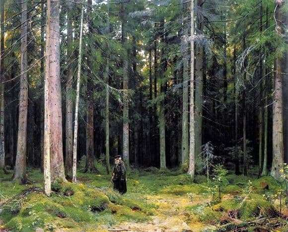 Description of the painting by Ivan Shishkin In the Forest of Countess Mordvinova