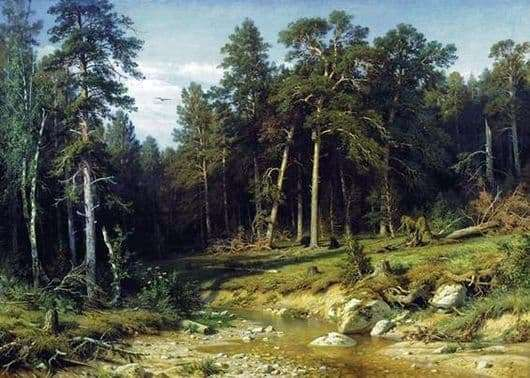 Description of the painting by Ivan Shishkin Sosnovy Bor. Mast forest in the Vyatka province