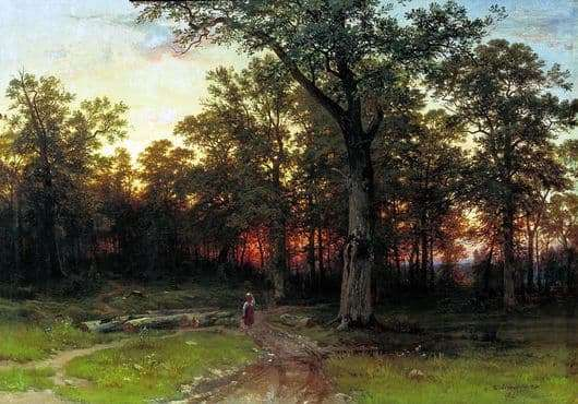 Description of the painting by Ivan Shishkin Forest in the evening
