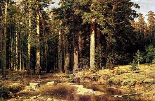 Description of the painting by Ivan Shishkin Ship Grove