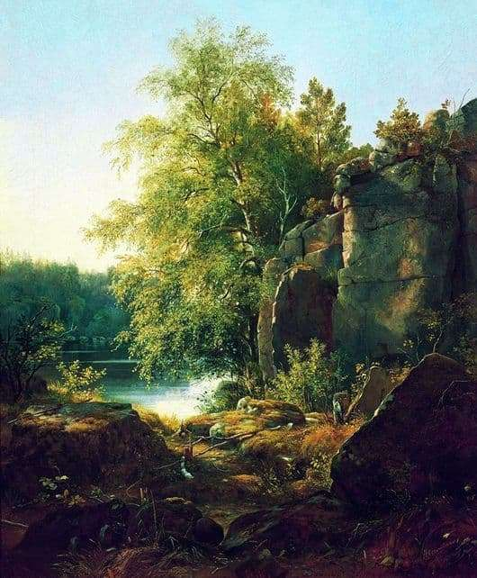 Description of the painting by Ivan Shishkin View on the island of Valaam