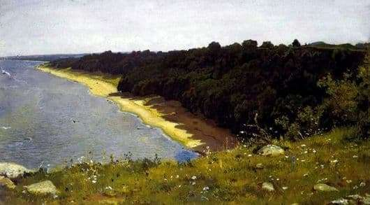 Description of the painting by Ivan Shishkin By the Sea