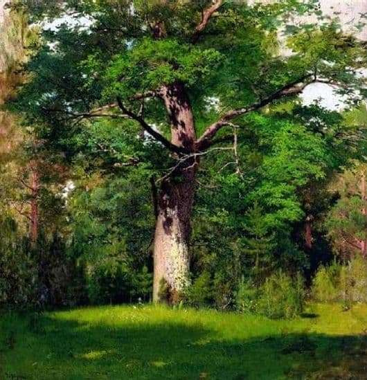 Description of the painting by Isaac Levitan Oak