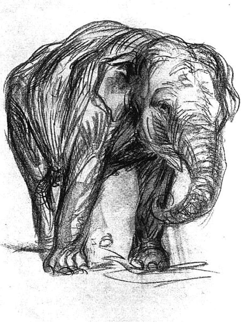 Description of the painting by Franz Mark Elephant