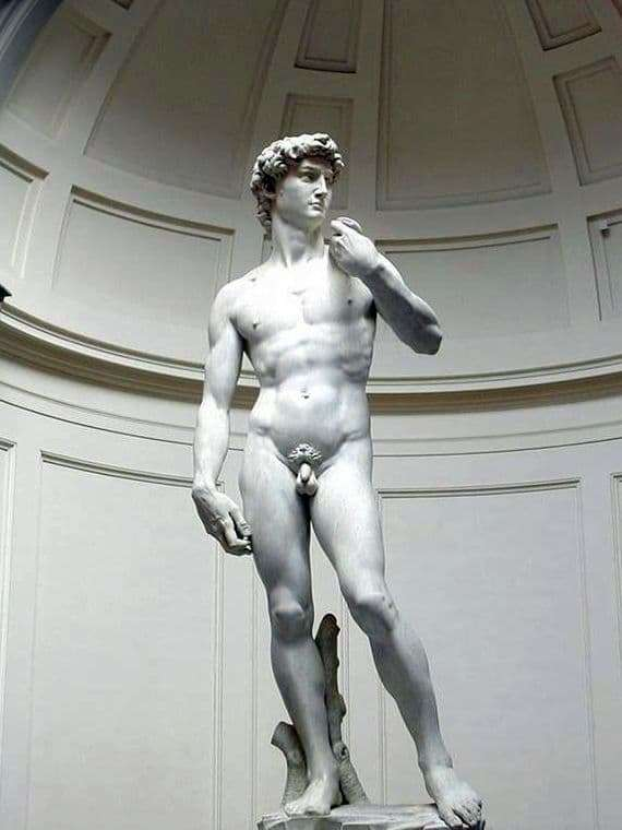 Description of the sculpture by Michelangelo Buanarroti David