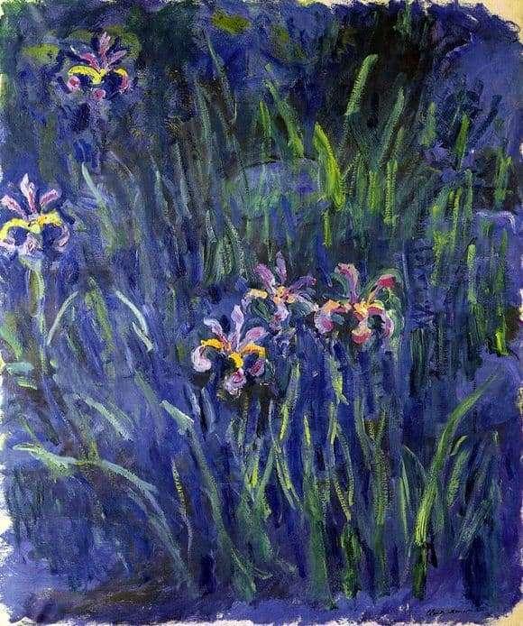 Description of the painting by Claude Monet Irises