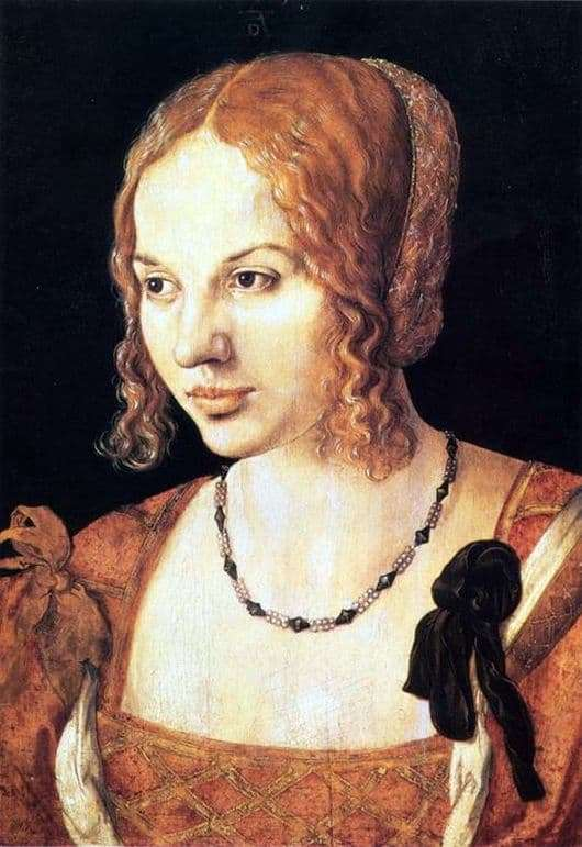 Description of the painting by Albrecht Durer Portrait of a Venetian