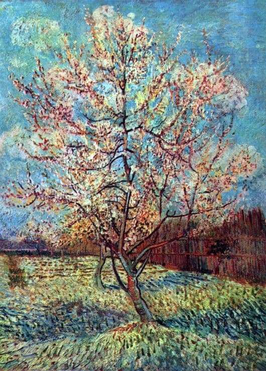 Description of the painting by Vincent Van Gogh Peach tree in bloom