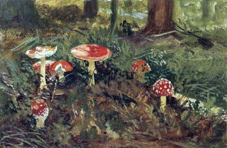 Description of the painting by Ivan Shishkin Amanita