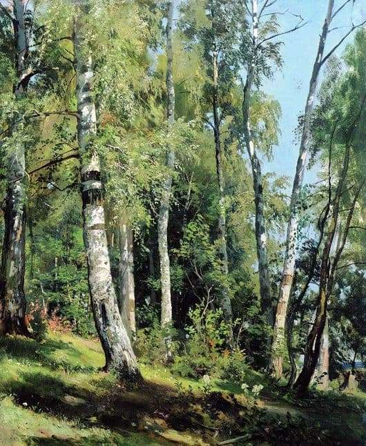Description of the painting by Ivan Shishkin Birch Grove