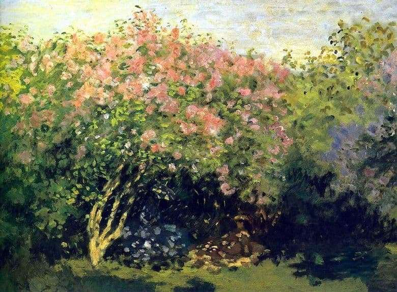 Description of the painting by Claude Monet Lilac in the sun