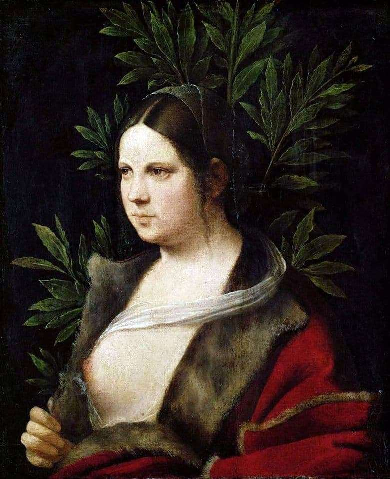 Description of the painting by Giorgione Laura