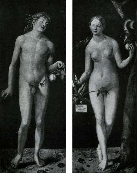 Description of the painting by Albrecht Durer Adam and Eve