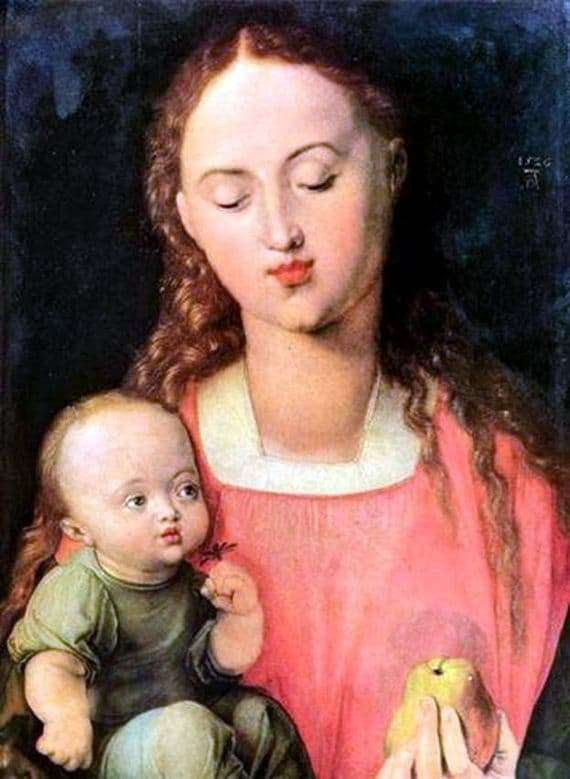 Description of the painting by Albrecht Durer Mary with the Child
