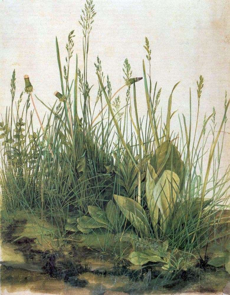 Description of the painting by Albrecht Durer A piece of sod