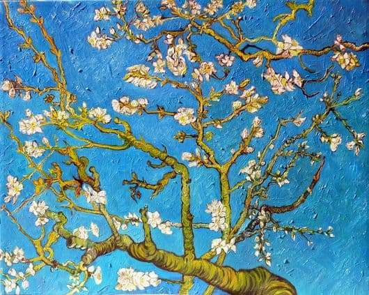 Description of the painting by Vincent Van Gogh Flowering almond branches