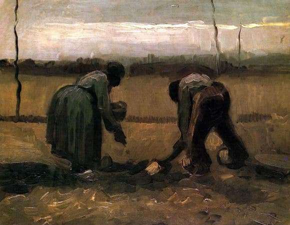 Description of the painting by Vincent van Gogh The peasant and the peasant woman planting potatoes