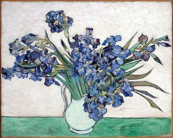 Description of the painting by Vincent van Gogh Vase with irises