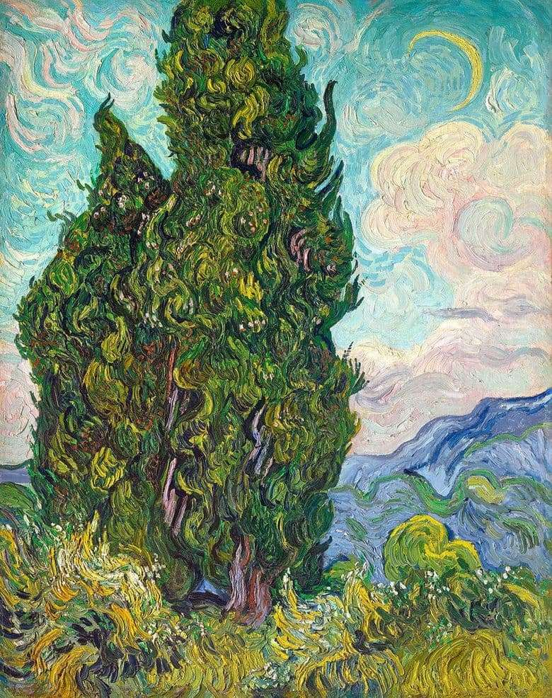Description of the painting by Vincent Van Gogh Cypress
