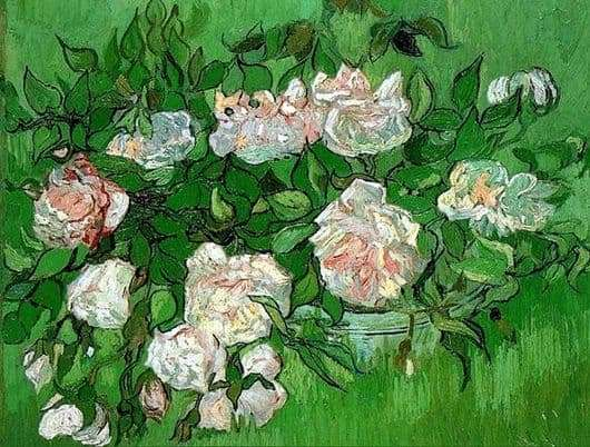 Description of the painting by Vincent van Gogh Pink roses