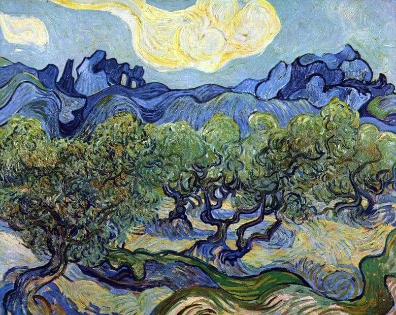 Description of the painting by Vincent Willem van Gogh Landscape with Olives &; nbsp