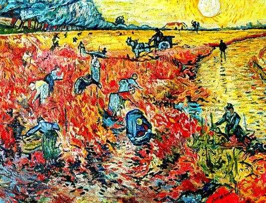 Description of the painting by Vincent van Gogh Red vineyards