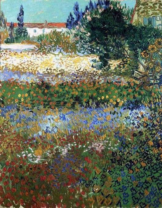 Description of the painting by Vincent Van Gogh Blooming Garden
