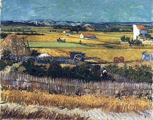 Description of the painting by Vincent van Gogh La Cros