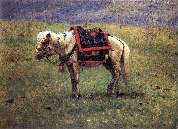 Description of the painting by Vasily Vereshchagin Himalayan pony