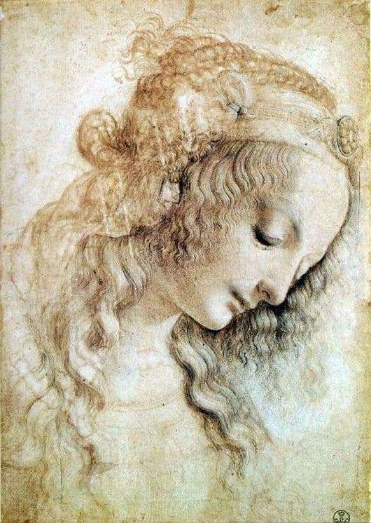 Description of the painting by Leonardo da Vinci The head of a woman