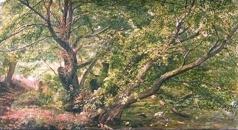 Description of the painting by Alexander Ivanov Trees at the stream