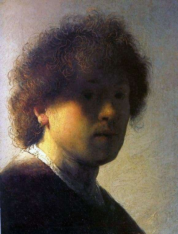 Description of the painting by Rembrandt Harmensz van Rijn Self portrait in youth