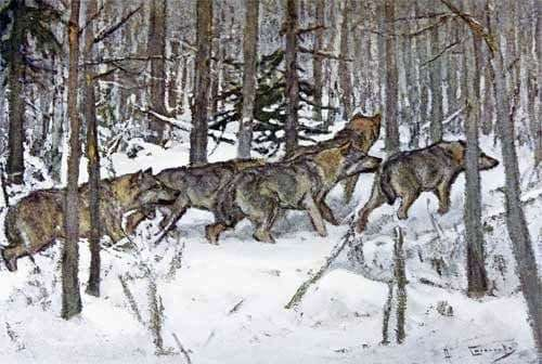 Description of the painting by Alexei Stepanov Wolves