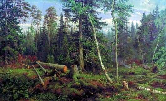 Description of the painting by Ivan Shishkin Forest felling