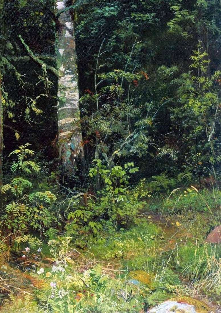 Description of the painting by Ivan Ivanovich Shishkin Birch and rowan