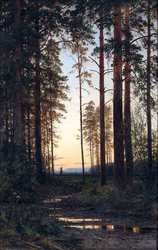 Description of the painting by Ivan Shishkin Twilight