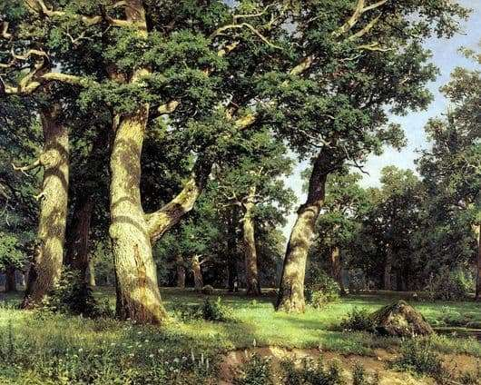 Description of the painting by Ivan Shishkin Oak Grove
