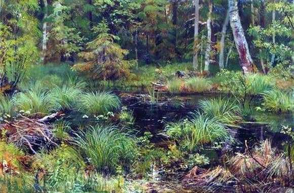 Description of the painting by Ivan Shishkin Spring in the forest