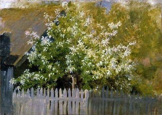 Description of the painting by Isaac Levitan Prunus