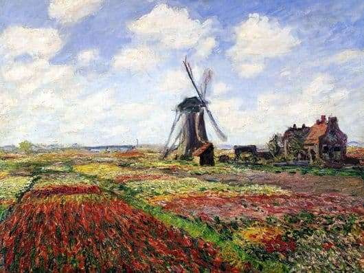 Description of the painting by Claude Monet Tulips of Holland