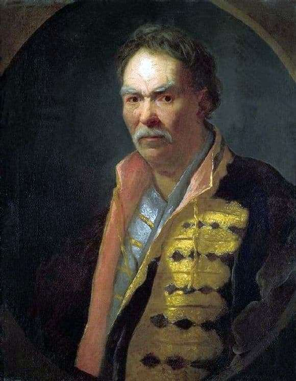 Description of the painting by Ivan Nikitin Portrait of a floor hetman